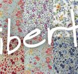 Revista  PLAZA NO BLOG – Saiba mais sobre o floral Liberty