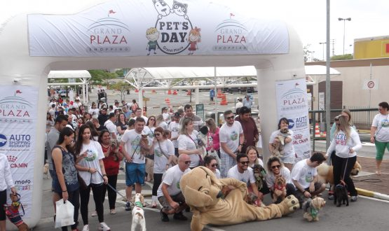 Saiba como foi o I Pet's Day do Grand Plaza